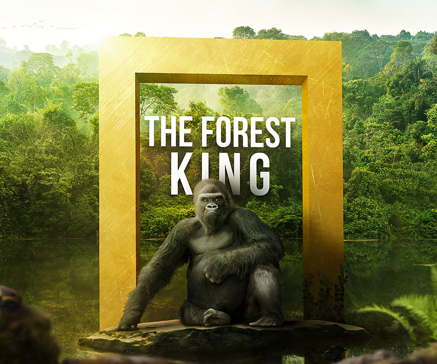 Forest King image